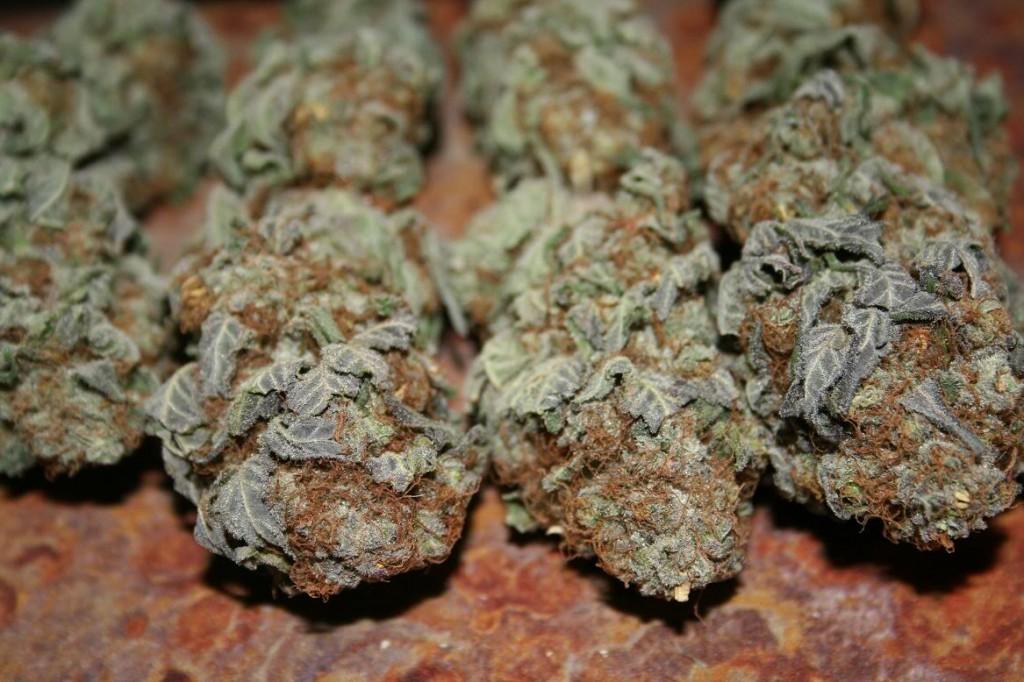 reggie weed scent