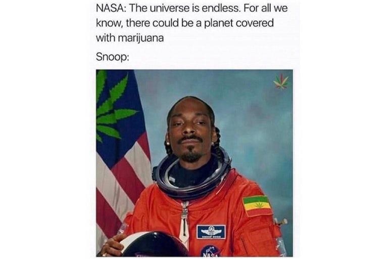 Snoop dog in astronaut suit